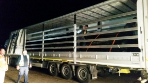 1.2 km silt curtain ready for despatch to Turkmenistan